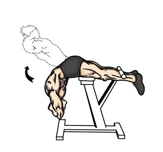 Тренажер для мышц спины своими руками