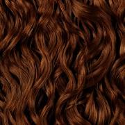 Листья цикория и баманский горошек – новые ингредиенты для производства косметики