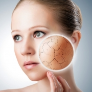 За какое время обновляется кожа лица
