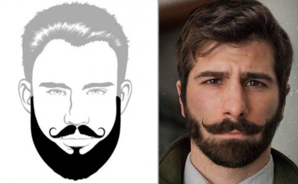 борода верди